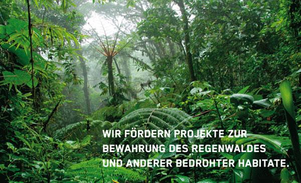 Zu sehen ist ein Regenwald-Ausschnitt mit verschiedenen Palmen, Pflanzen und Bäumen. Im Bild ist ein Text zu lesen: Wir befördern Projekte zur Bewahrung des Regenwaldes und anderer bedrohter Habitate.